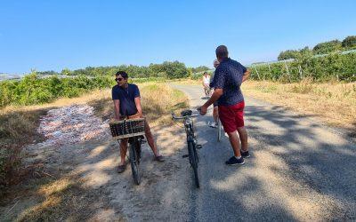 Cyclo vino tour
